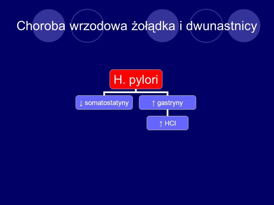 Choroba wrzodowa żołądka i dwunastnicy H. pylori somatostatyny gastryny HCl