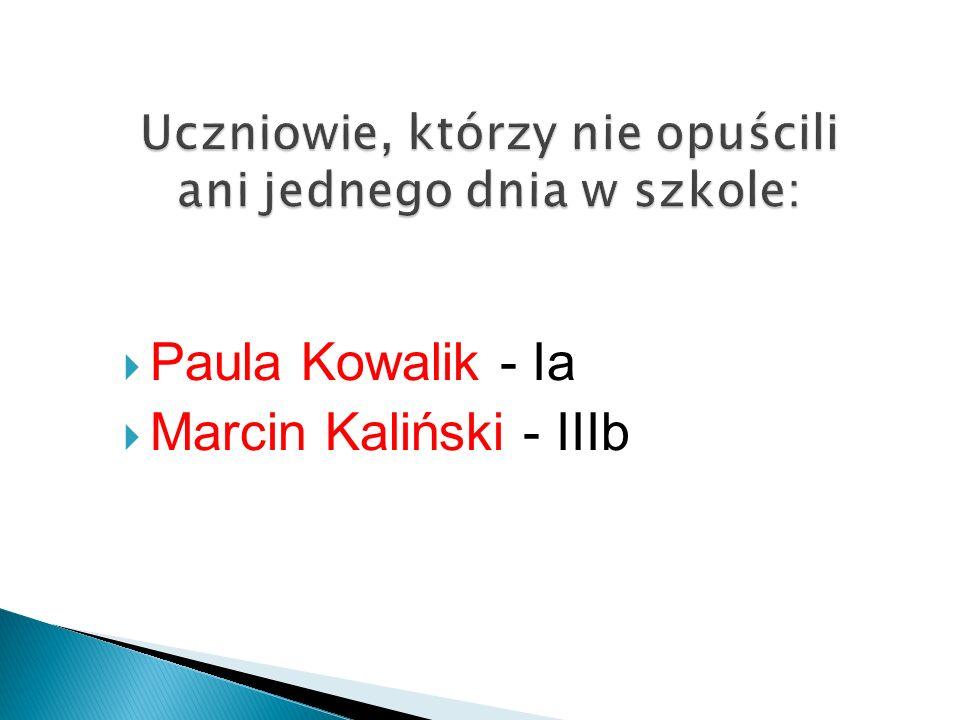 Paula Kowalik - Ia Marcin Kaliński - IIIb