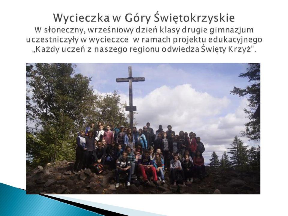 Gimnazjum przystąpiło do międzynarodowego Programu Comenius - Partnerskie Projekty Szkół - projekt Wordcrossing Celem projektu jest m.in.