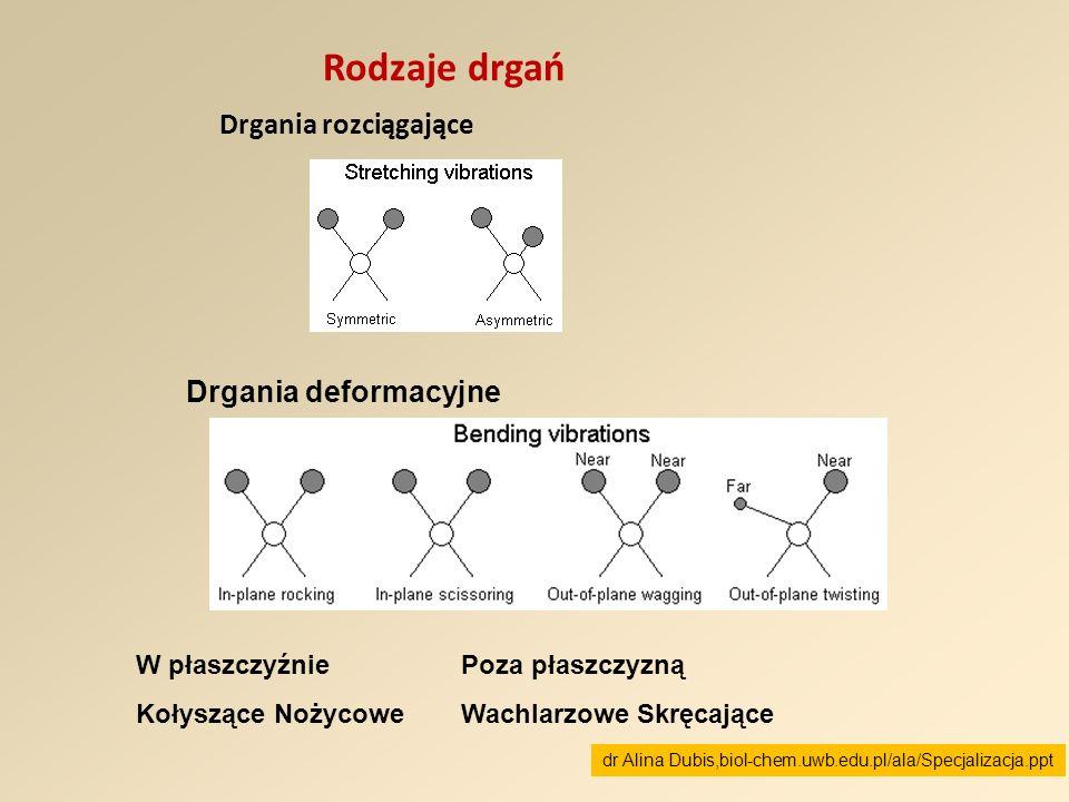 Rodzaje drgań Drgania rozciągające Drgania deformacyjne W płaszczyźnie Kołyszące Nożycowe Poza płaszczyzną Wachlarzowe Skręcające dr Alina Dubis,biol-