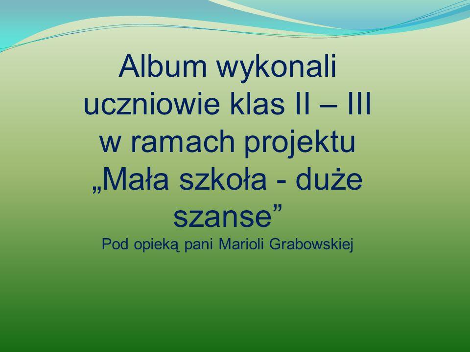 Album wykonali uczniowie klas II – III w ramach projektu Mała szkoła - duże szanse Pod opieką pani Marioli Grabowskiej