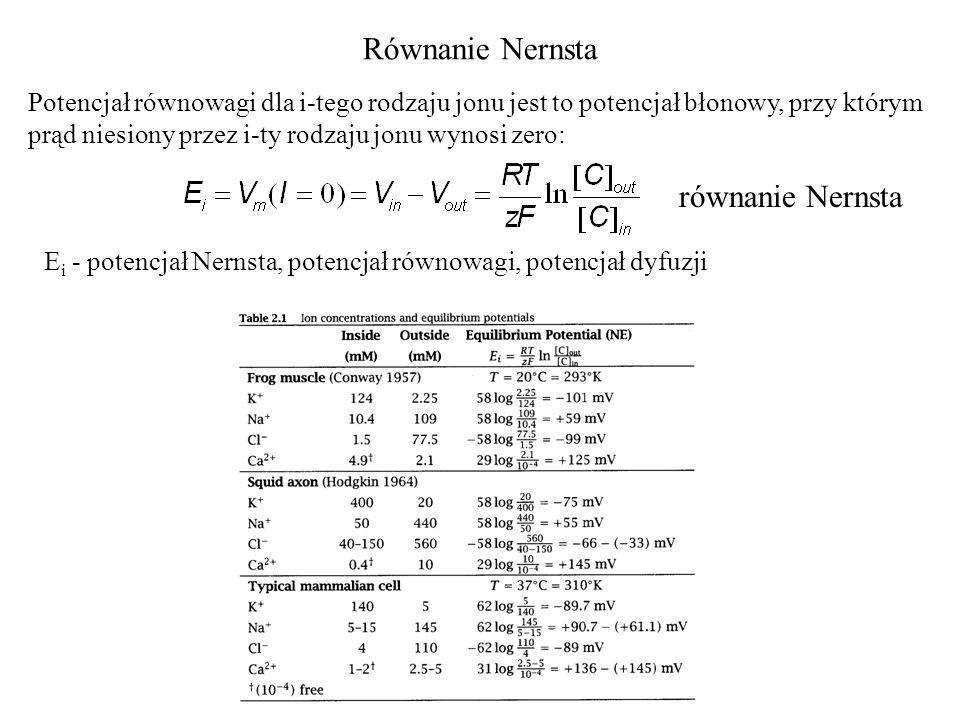 Równanie Nernsta Potencjał równowagi dla i-tego rodzaju jonu jest to potencjał błonowy, przy którym prąd niesiony przez i-ty rodzaju jonu wynosi zero: E i - potencjał Nernsta, potencjał równowagi, potencjał dyfuzji równanie Nernsta