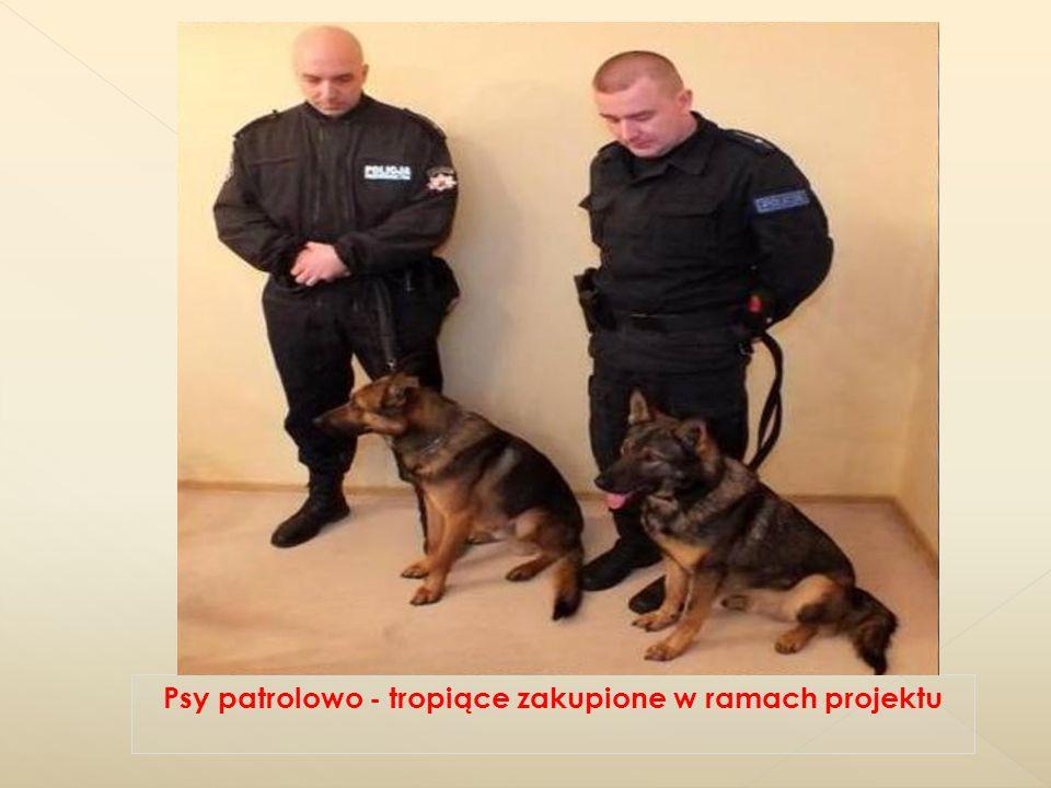 Psy patrolowo - tropiące zakupione w ramach projektu