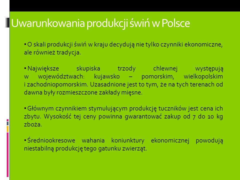 Uwarunkowania produkcji świń w Polsce O skali produkcji świń w kraju decydują nie tylko czynniki ekonomiczne, ale również tradycja. Największe skupisk