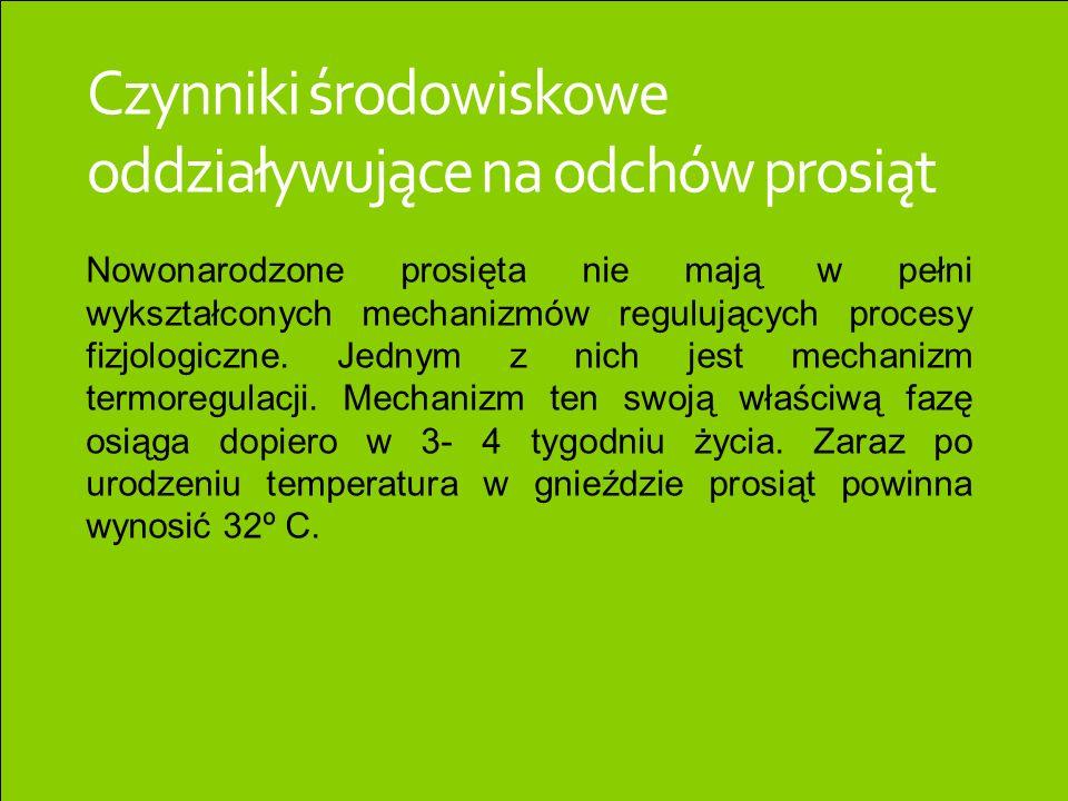 Czynniki środowiskowe oddziaływujące na odchów prosiąt Nowonarodzone prosięta nie mają w pełni wykształconych mechanizmów regulujących procesy fizjolo