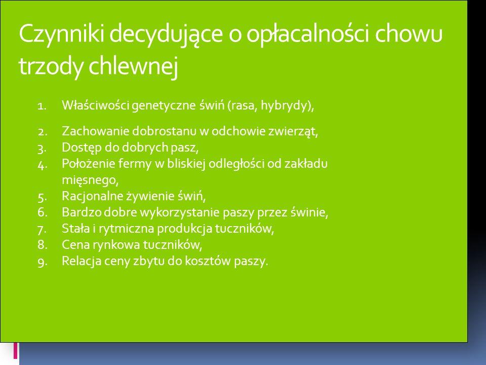 Zagraniczne rasy świń w Polsce Rasa Pietrain