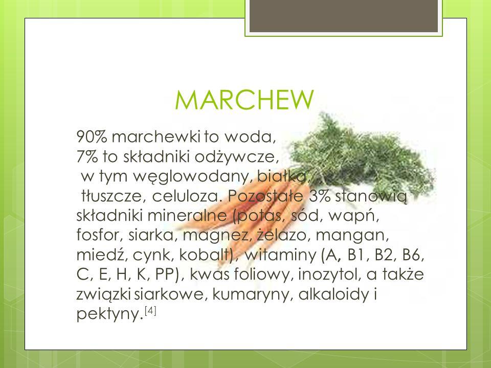 MARCHEW 90% marchewki to woda, 7% to składniki odżywcze, w tym węglowodany, białka, tłuszcze, celuloza. Pozostałe 3% stanowią składniki mineralne (pot