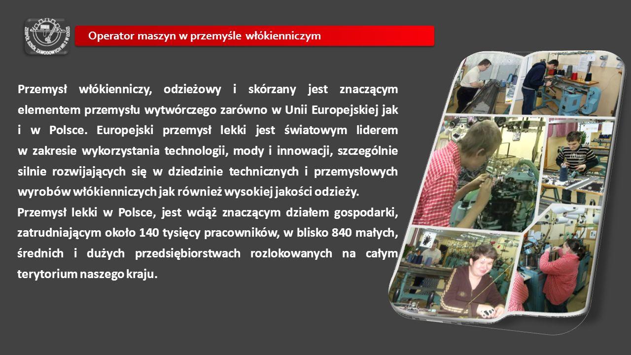 Przemysł włókienniczy, odzieżowy i skórzany jest znaczącym elementem przemysłu wytwórczego zarówno w Unii Europejskiej jak i w Polsce. Europejski prze