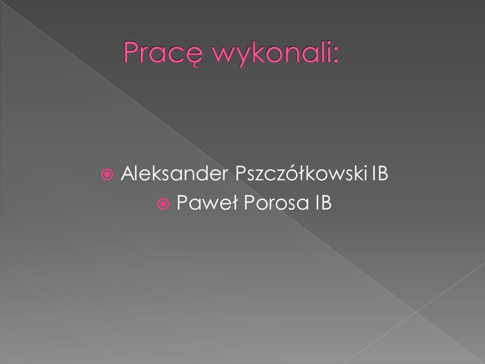 Aleksander Pszczółkowski IB Paweł Porosa IB