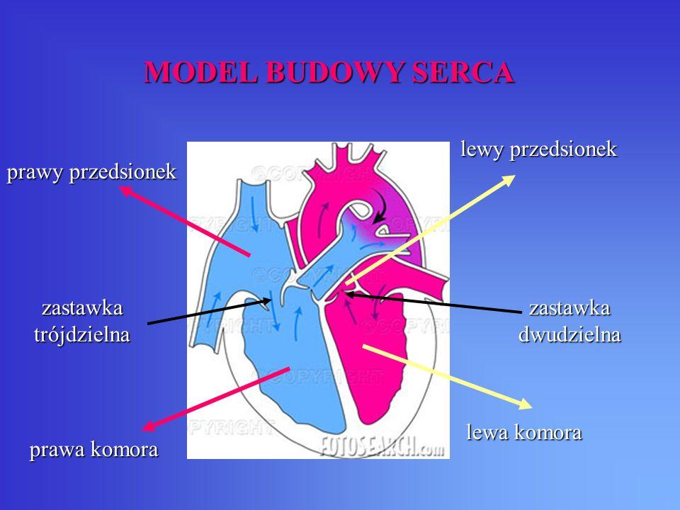 ZAWAŁ SERCA To martwica mięśnia sercowego spowodowana jego niedokrwieniem na skutek zamknięcia tętnicy wieńcowej doprowadzającej krew do obszaru serca.