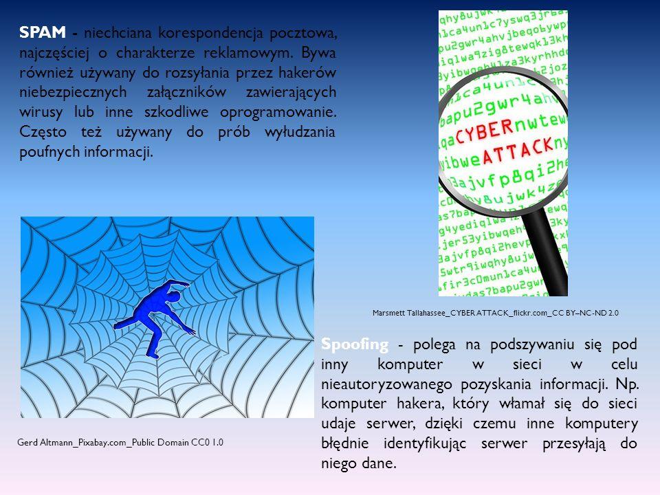Przygotowała : Natalia Sikorska, klasa 3b, Źródło: GMIT.PL, Inne rodzaje zagrożeń naszego komputera, http://www.gmit.pl/bezpieczenstwo/informatyczne/pl/88 Gerd Altmann_Pixabay.com_Public Domain CC0 1.0
