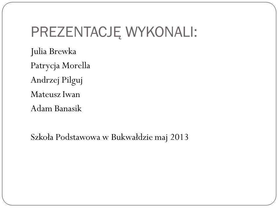 PREZENTACJĘ WYKONALI: Julia Brewka Patrycja Morella Andrzej Pilguj Mateusz Iwan Adam Banasik Szkoła Podstawowa w Bukwałdzie maj 2013