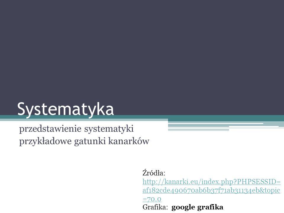 Systematyka przedstawienie systematyki przykładowe gatunki kanarków Źródła: http://kanarki.eu/index.php?PHPSESSID= af182cde490670ab6b37f71ab31134eb&to
