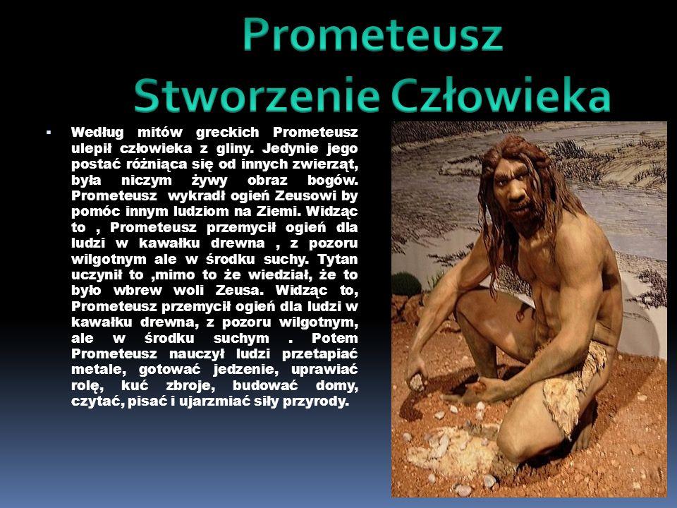 Według mitów greckich Prometeusz ulepił człowieka z gliny. Jedynie jego postać różniąca się od innych zwierząt, była niczym żywy obraz bogów. Prometeu