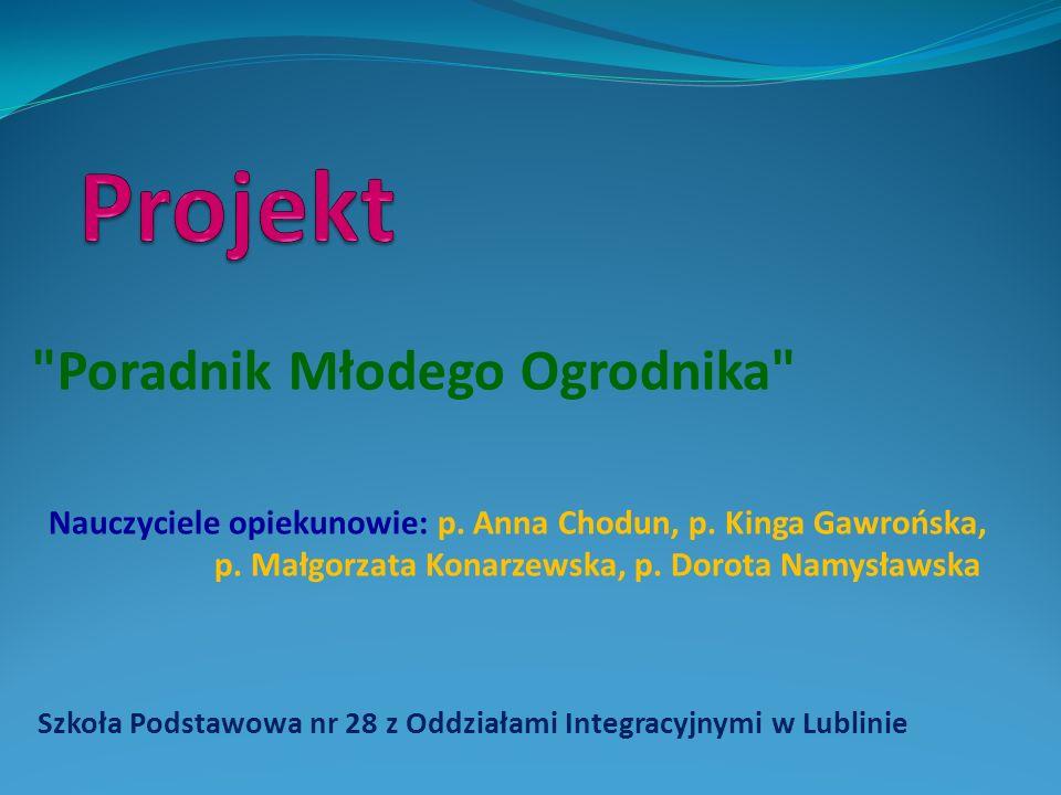 Szkoła Podstawowa nr 28 z Oddziałami Integracyjnymi w Lublinie Na ortograficznych ścieżkach.
