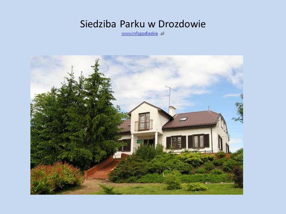 Siedziba Parku w Drozdowie www.infopodlaskie.pl www.infopodlaskie