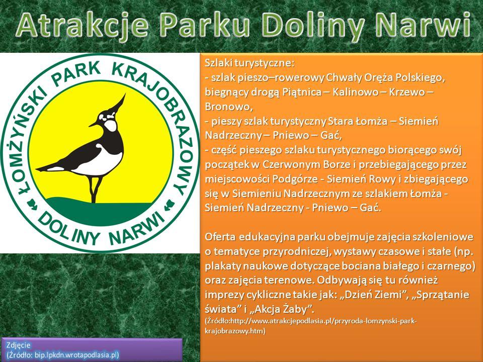 Szlaki turystyczne: - szlak pieszo–rowerowy Chwały Oręża Polskiego, biegnący drogą Piątnica – Kalinowo – Krzewo – Bronowo, - pieszy szlak turystyczny