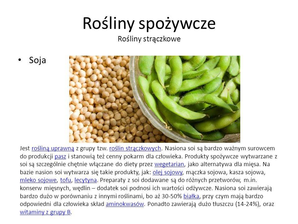 Rośliny spożywcze Rośliny strączkowe Soja Jest rośliną uprawną z grupy tzw.