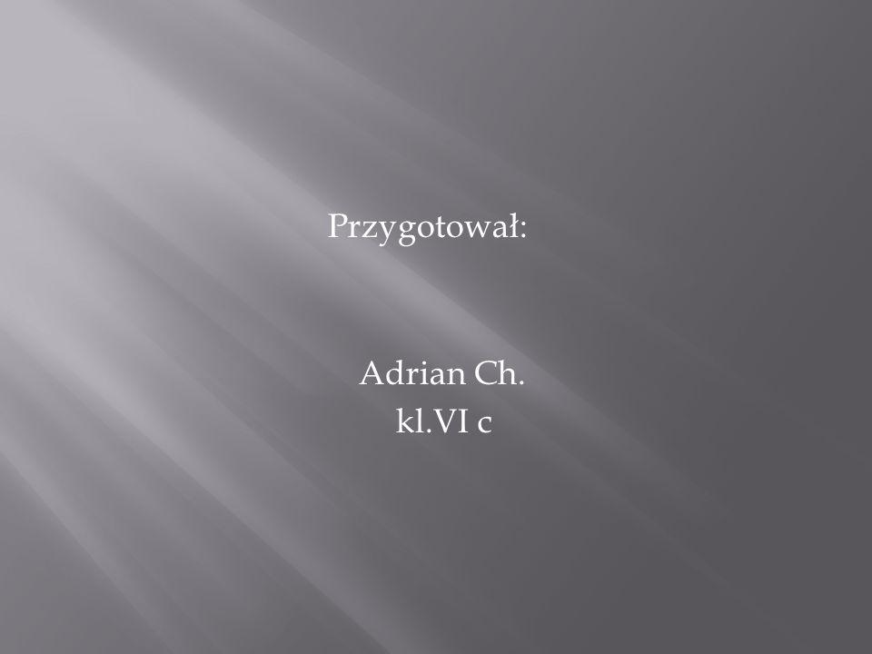 Przygotował: Adrian Ch. kl.VI c