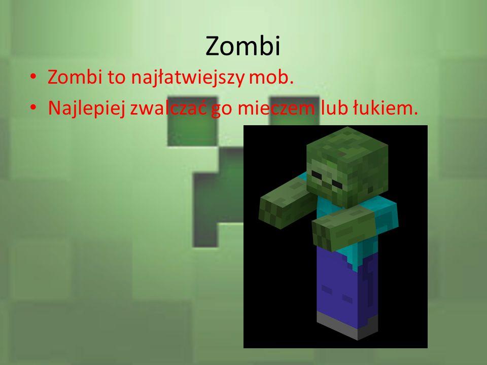 Zombi Zombi to najłatwiejszy mob. Najlepiej zwalczać go mieczem lub łukiem.