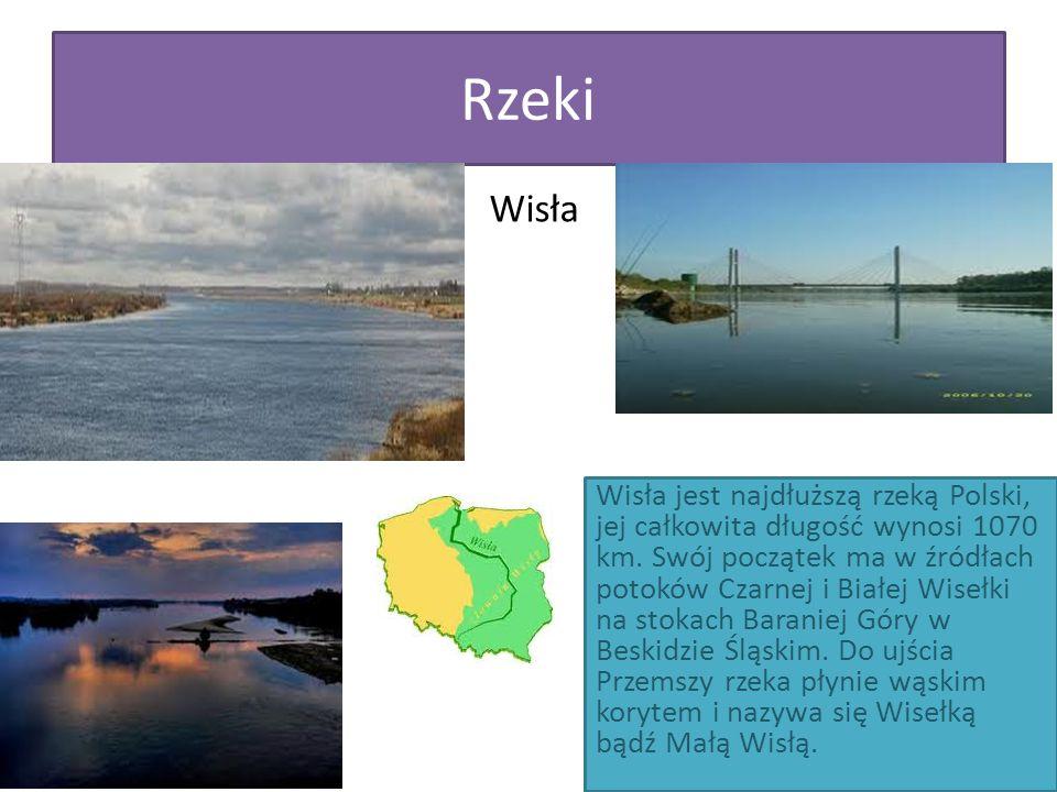 Rzeki Wisła Wisła jest najdłuższą rzeką Polski, jej całkowita długość wynosi 1070 km. Swój początek ma w źródłach potoków Czarnej i Białej Wisełki na