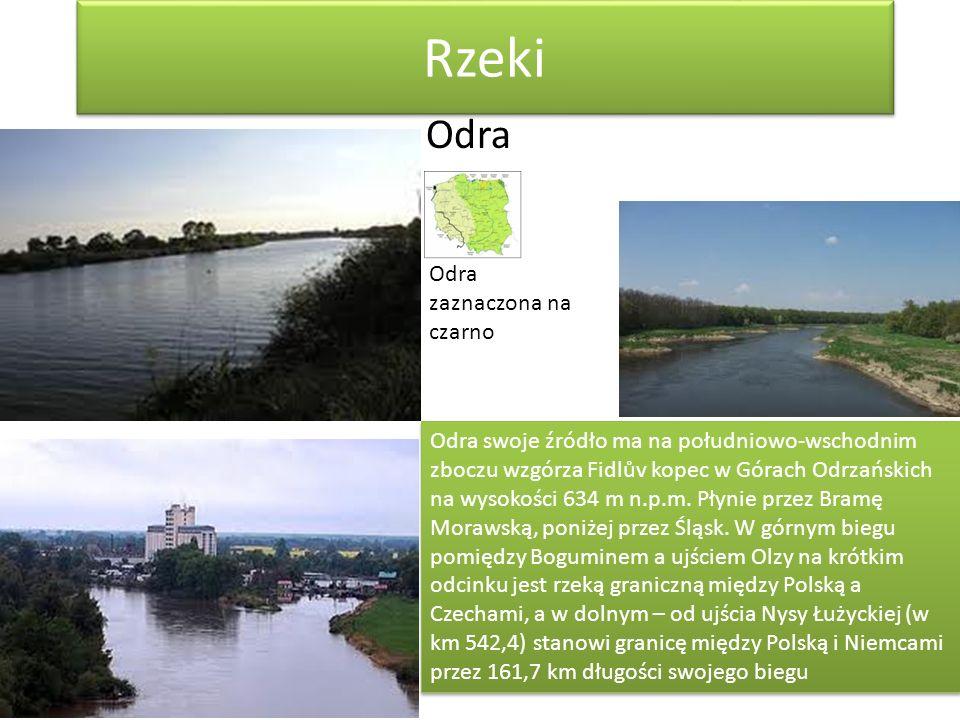 Rzeki Odra Odra swoje źródło ma na południowo-wschodnim zboczu wzgórza Fidlův kopec w Górach Odrzańskich na wysokości 634 m n.p.m. Płynie przez Bramę