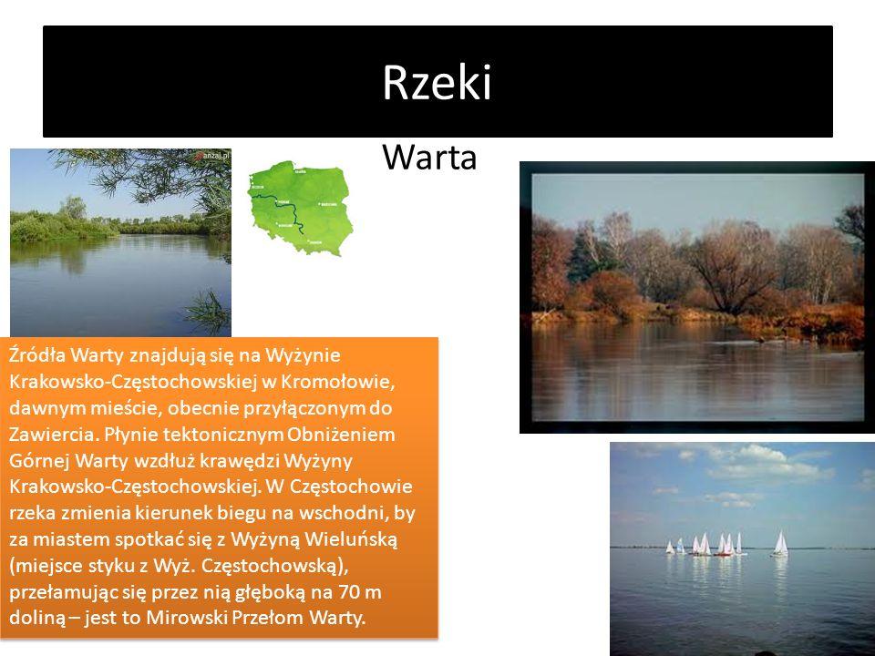 Rzeki Warta Źródła Warty znajdują się na Wyżynie Krakowsko-Częstochowskiej w Kromołowie, dawnym mieście, obecnie przyłączonym do Zawiercia. Płynie tek