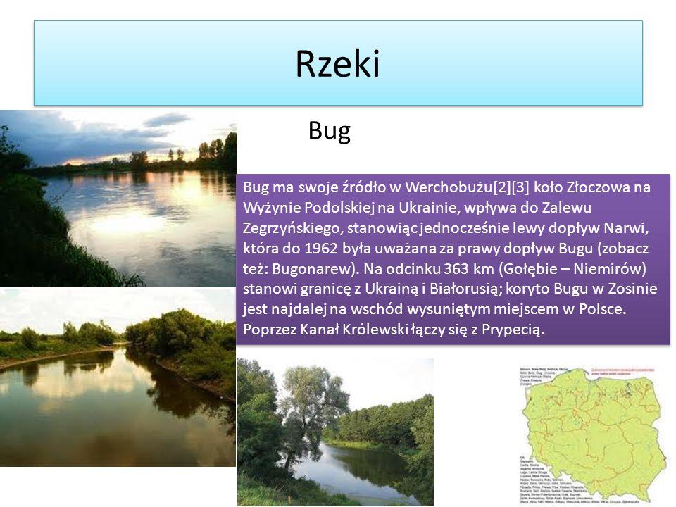 Rzeki Bug Bug ma swoje źródło w Werchobużu[2][3] koło Złoczowa na Wyżynie Podolskiej na Ukrainie, wpływa do Zalewu Zegrzyńskiego, stanowiąc jednocześn