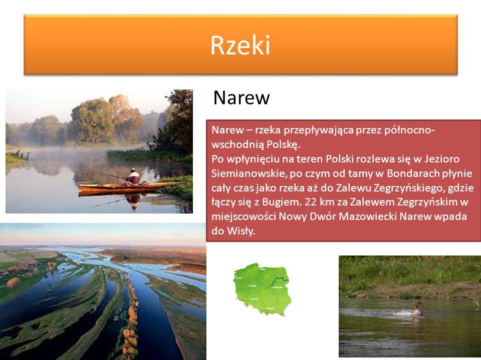Rzeki Narew Narew – rzeka przepływająca przez północno- wschodnią Polskę. Po wpłynięciu na teren Polski rozlewa się w Jezioro Siemianowskie, po czym o