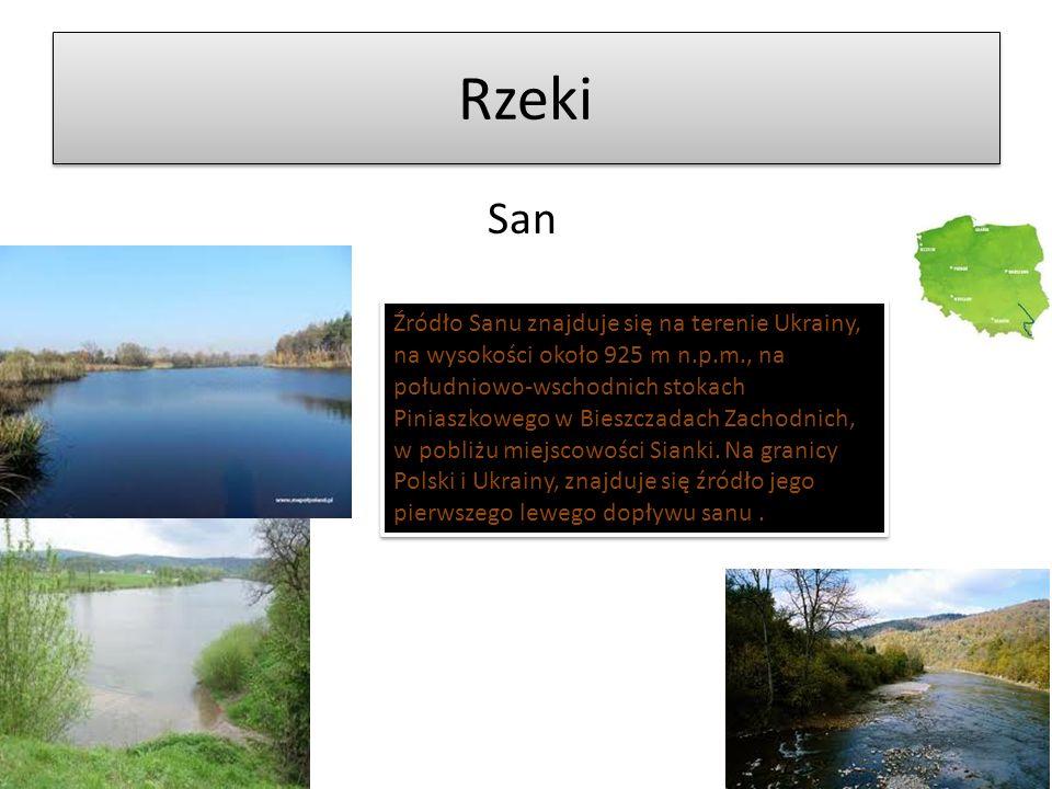 Rzeki Źródło Noteci znajduje się na obszarze pomiędzy wsią Szczecin a Bogołoia w gminie Chodecz, na Pojezierzu Kujawskim, na zachód od Jeziora Kroszewskieg.