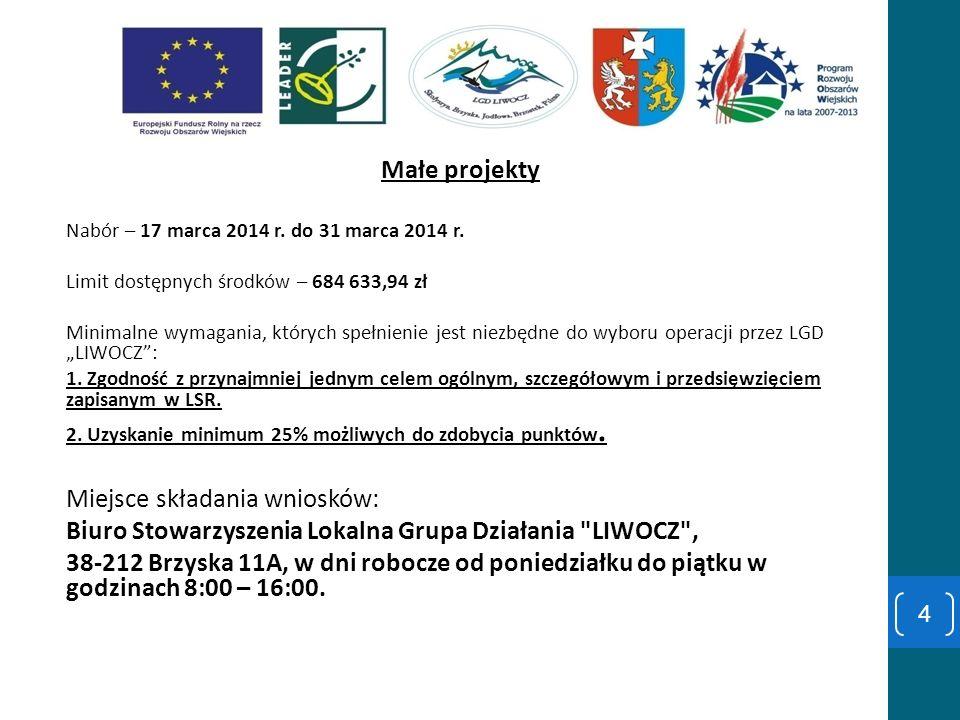 Małe projekty Nabór – 17 marca 2014 r. do 31 marca 2014 r. Limit dostępnych środków – 684 633,94 zł Minimalne wymagania, których spełnienie jest niezb