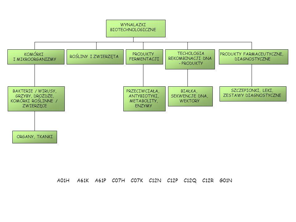 A01H A61K A61P C07H C07K C12N C12P C12Q C12R G01N WYNALAZKI BIOTECHNOLOGICZNE KOMÓRKI I MIKROORGANIZMY BAKTERIE / WIRUSY, GRZYBY, DROŻDŻE, KOMÓRKI ROŚLINNE / ZWIERZĘCE PRZECIWCIAŁA, ANTYBIOTYKI, METABOLITY, ENZYMY BIAŁKA, SEKWENCJE DNA, WEKTORY SZCZEPIONKI, LEKI, ZESTAWY DIAGNOSTYCZNE ORGANY, TKANKI ROŚLINY I ZWIERZĘTA PRODUKTY FERMENTACJI TECHOLOGIA REKOMBINACJI DNA - PRODUKTY PRODUKTY FARMACEUTYCZNE, DIAGNOSTYCZNE