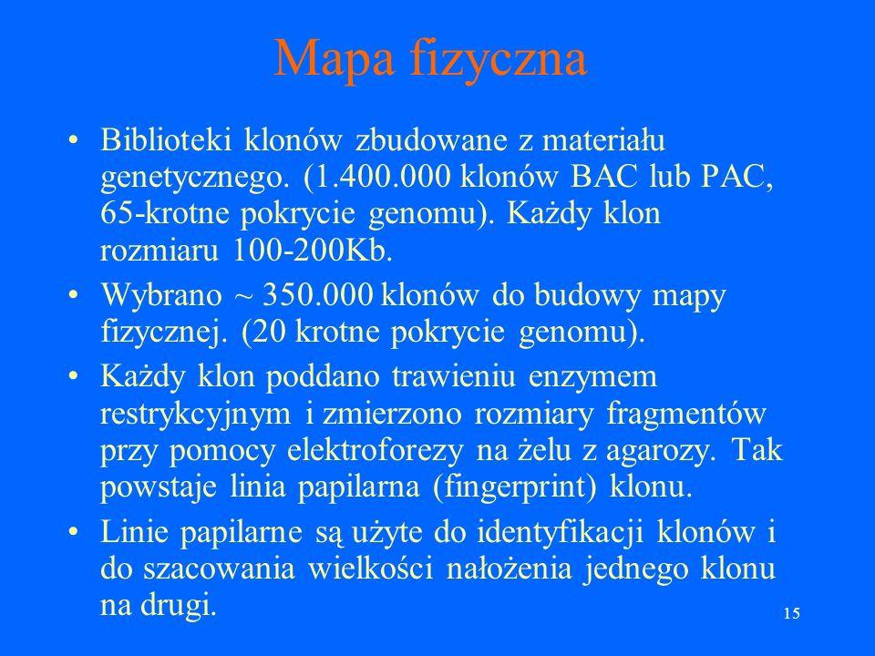 14 Klony Plazmidy (~ 4Kb). Kosmidy (~ 40Kb). Yeast Artificial Chromosome, YAC (do 500Kb). Bacterial Artificial Chromosome, BAC (100-300Kb).