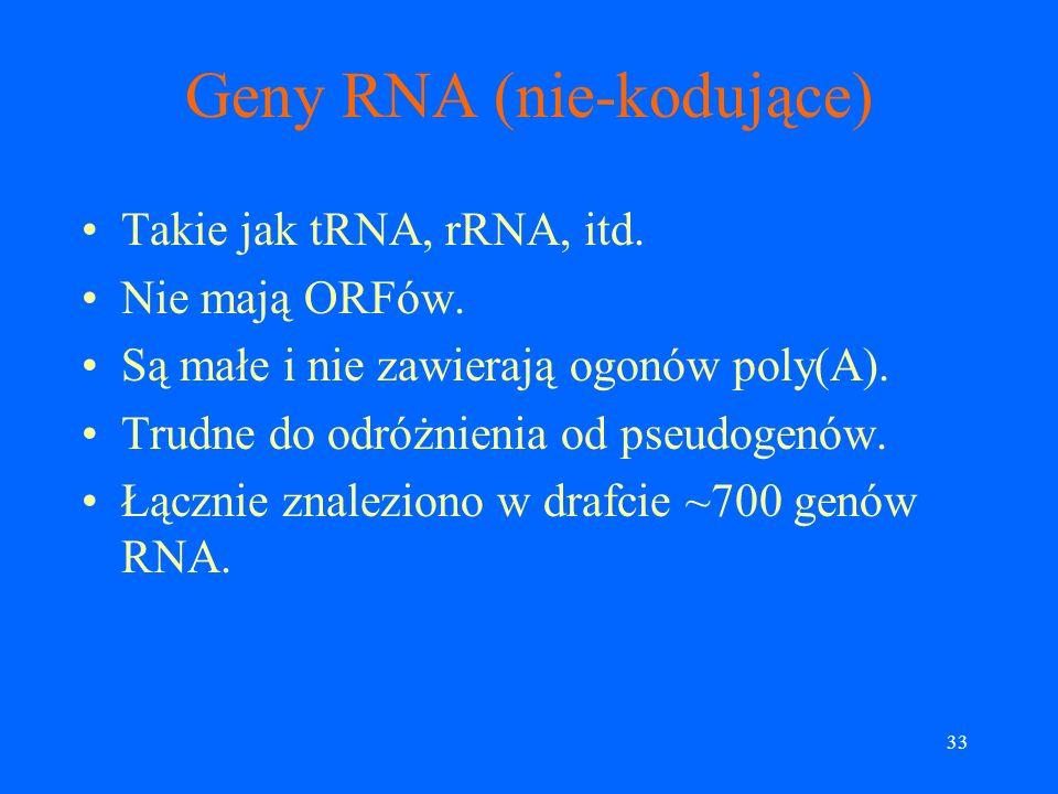 32 Co wiadomo na temat liczby genów? W małych genomach geny są ściśle związane z ORFami (ORF = Open Reading Frame). U człowieka średnia długość eksonu
