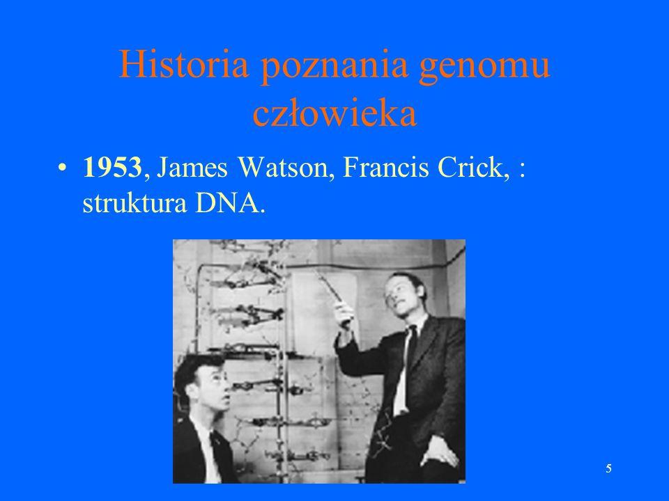 5 Historia poznania genomu człowieka 1953, James Watson, Francis Crick, : struktura DNA.