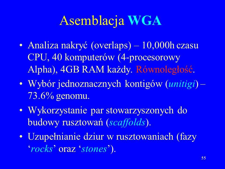 54 Dwie strategie asemblacji genomu Whole-genome assembly (WGA). Compartmentalized shotgun assembly (CSA).