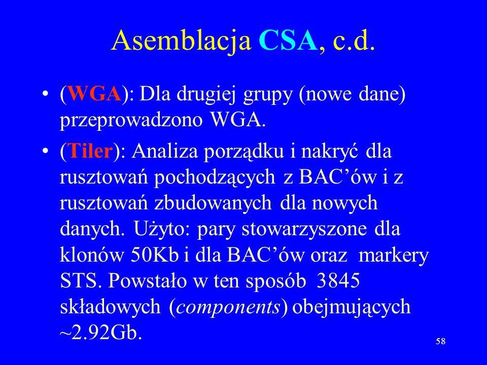 57 Asemblacja CSA, c.d. (Combining Assembler): Dla tych z pierwszej grupy, dla każdego BACa wzięto kontigi z HGP oraz pasujące odczyty Celery. –Użyto