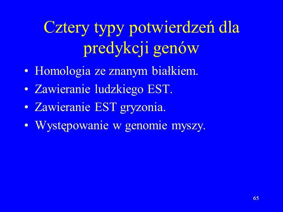64 Poszukiwanie genów, c.d. Oprócz Otto użyto trzech programów odgadujących geny: GRAIL, Genescan, FgenesH. Zrobiły one łącznie 76,410 różnych predykc