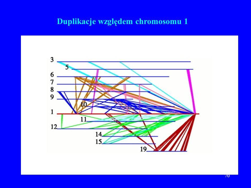 69 Rozkład 26,383 genów wg. molekularnej funkcji