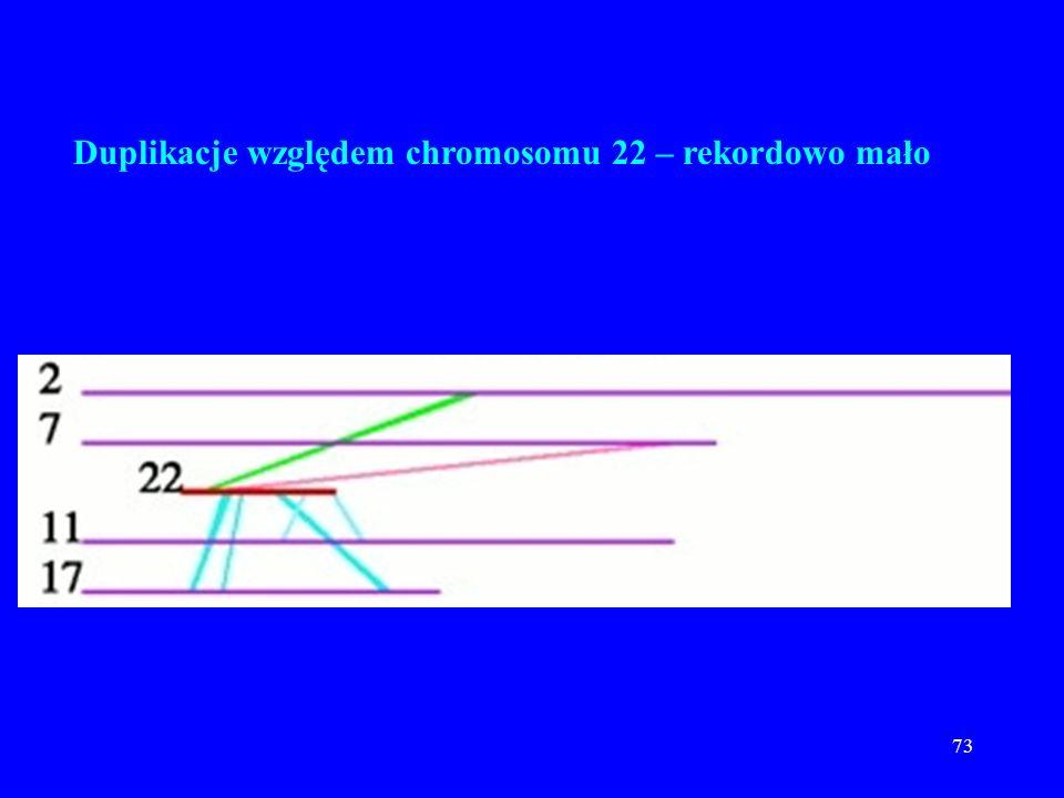 72 Duplikacje względem chromosomu 19 – rekordowo dużo