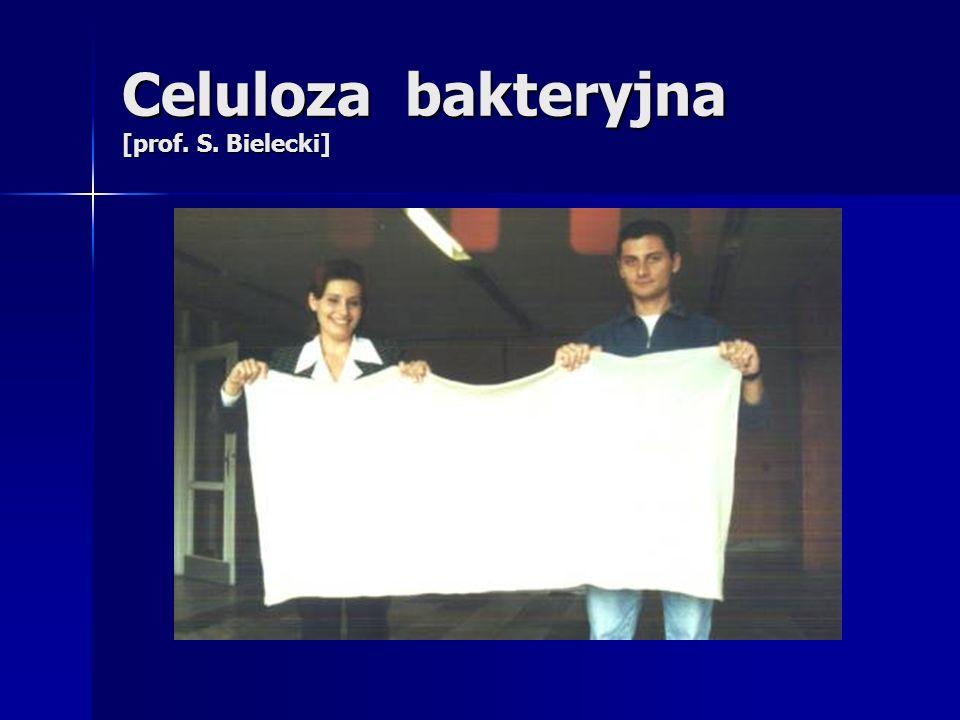 Celuloza bakteryjna [prof. S. Bielecki]