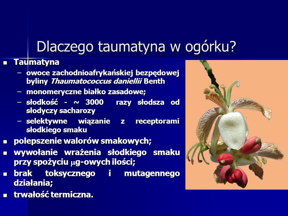 Dlaczego taumatyna w ogórku? Taumatyna Taumatyna –owoce zachodnioafrykańskiej bezpędowej byliny Thaumatococcus daniellii Benth –monomeryczne białko za