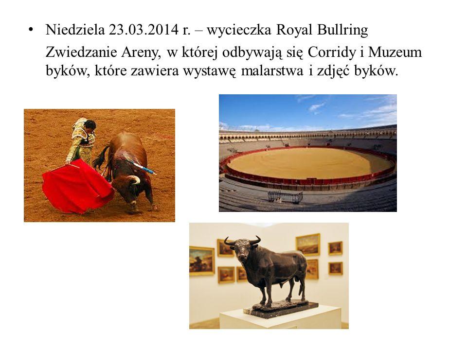 Niedziela 23.03.2014 r. – wycieczka Royal Bullring Zwiedzanie Areny, w której odbywają się Corridy i Muzeum byków, które zawiera wystawę malarstwa i z