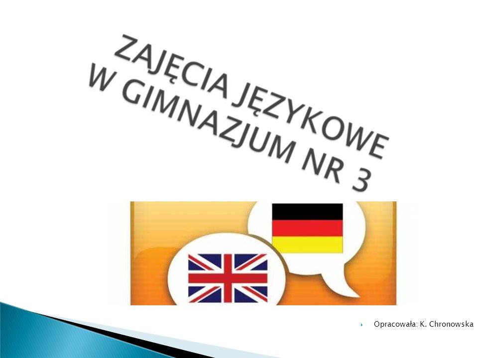 poszerzamy wiedzę z literatury, historii, realioznawstwa krajów anglojęzycznych, niemieckojęzycznych oraz frankofońskich, przygotowujemy projekty, rozwijamy swoje umiejętności w domu dzięki programowi e-tutor, tłumaczymy teksty z języka angielskiego na język polski i vice versa, uczestniczymy w Kółku filmowo-językowym, prowadzimy Kącik anglofila w gazetce szkolnej SZATNIA.