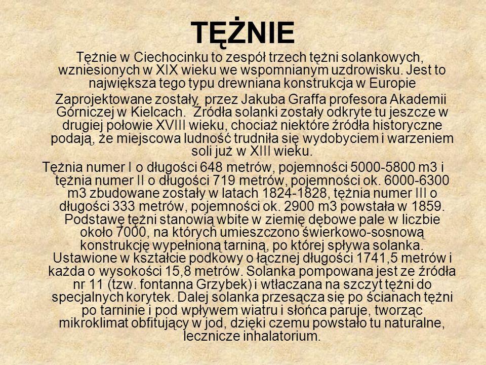 TĘŻNIE Tężnie w Ciechocinku to zespół trzech tężni solankowych, wzniesionych w XIX wieku we wspomnianym uzdrowisku.