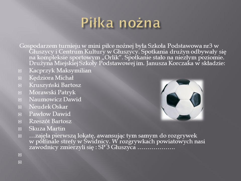 Gospodarzem turnieju w mini piłce nożnej była Szkoła Podstawowa nr3 w Głuszycy i Centrum Kultury w Głuszycy. Spotkania drużyn odbywały się na kompleks
