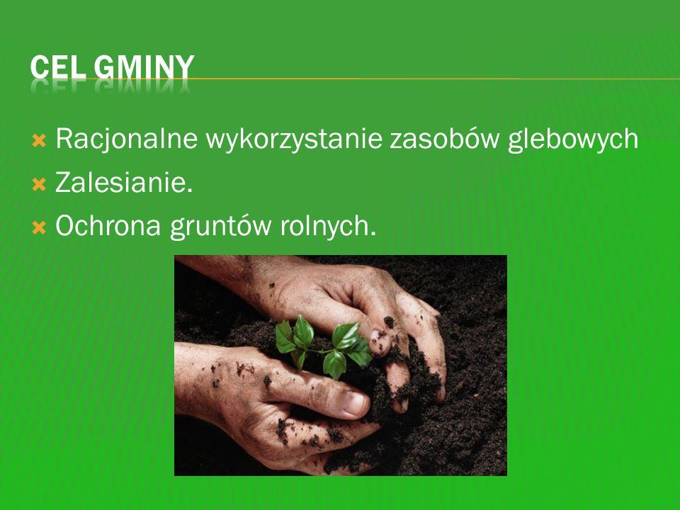 Racjonalne wykorzystanie zasobów glebowych Zalesianie. Ochrona gruntów rolnych.