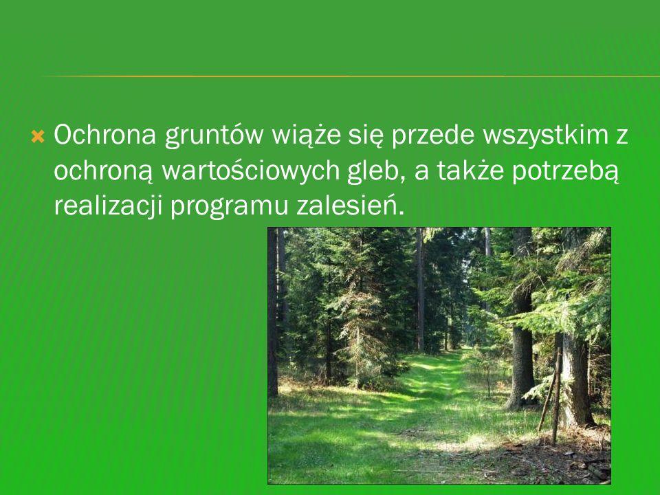 Ochrona gruntów wiąże się przede wszystkim z ochroną wartościowych gleb, a także potrzebą realizacji programu zalesień.