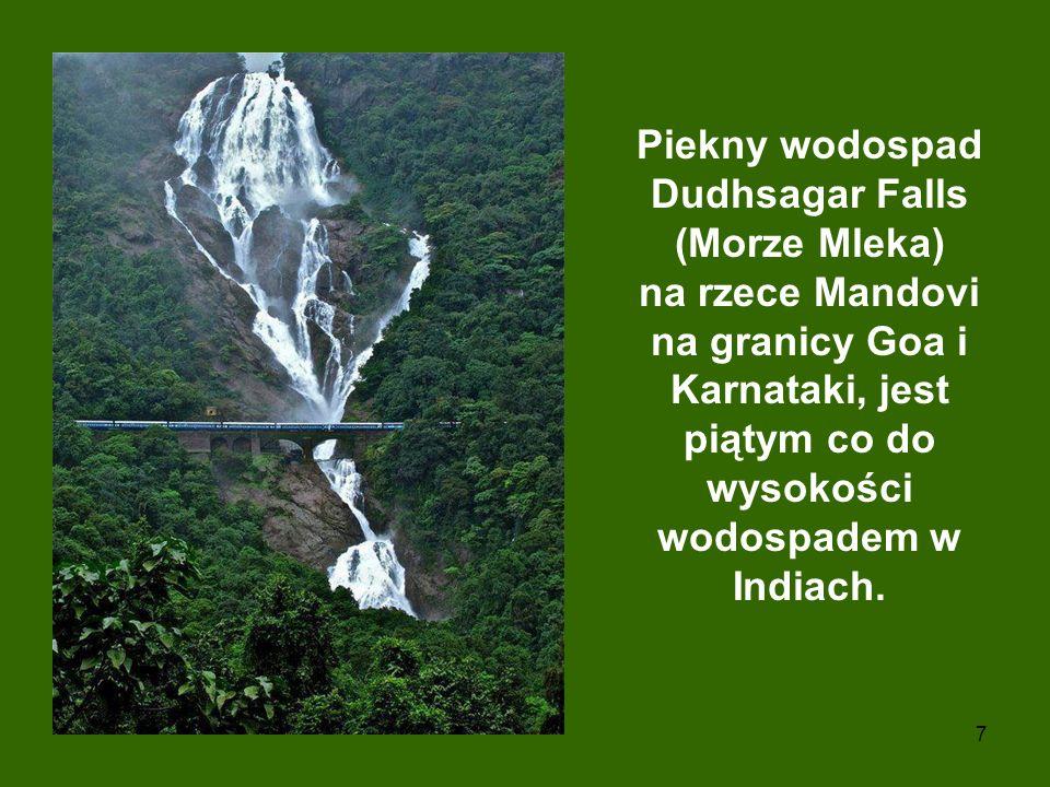 7 Piekny wodospad Dudhsagar Falls (Morze Mleka) na rzece Mandovi na granicy Goa i Karnataki, jest piątym co do wysokości wodospadem w Indiach.