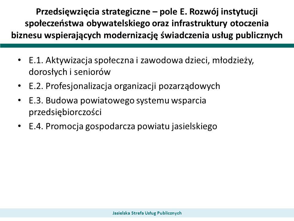 Przedsięwzięcia strategiczne – pole E. Rozwój instytucji społeczeństwa obywatelskiego oraz infrastruktury otoczenia biznesu wspierających modernizację